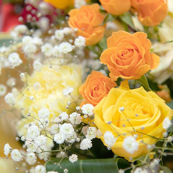 鮮やかなビタミンカラーの花々